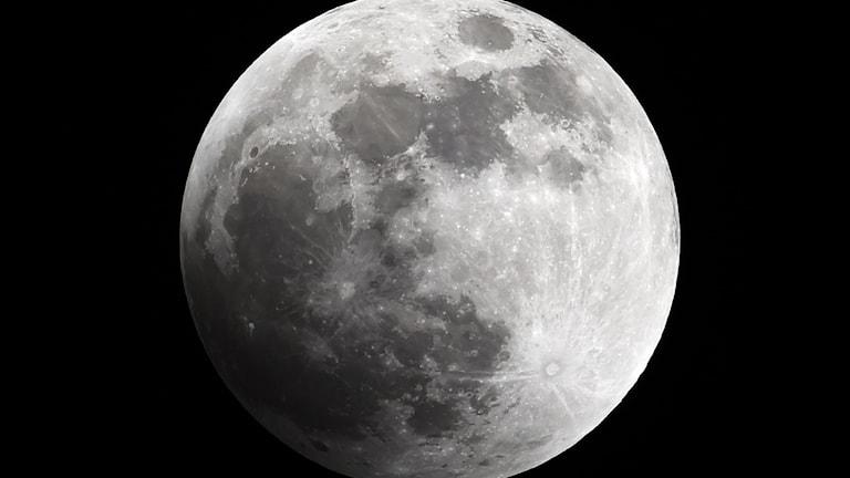 Foto av månen. Foto: Juan Barreto/TT.