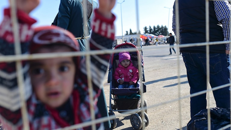 Syriska flyktingar vid gränsen till Turkiet. Foto: Bulent Kilic/TT.