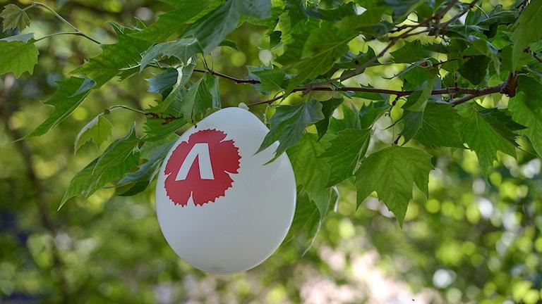 Vänsterpartiballong som fastnat i ett träd. Foto: Janerik Henriksson/TT