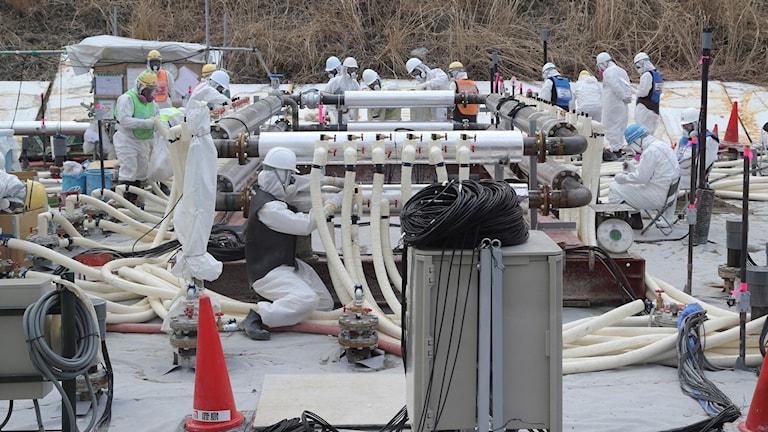 Arbetare instalerar underjordisk ismur runt kärnkraftverket i Fukushima