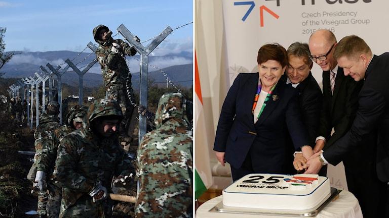T.v. Militärer bygger stängsel t.h. fyra personer från Visegradgruppen skär en tårta.