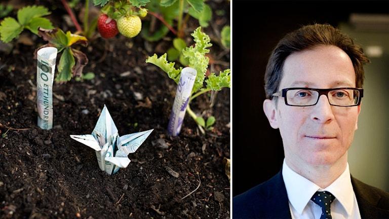 Delad bild: Pengar som växer i ett trädgårdsland och Hans Lindberg.