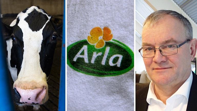 Åke Hantoft är styrelseordförande i Arla.