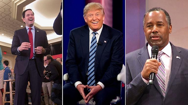 Från vänster: Marco Rubio, Donald Trump och Ben Carson.