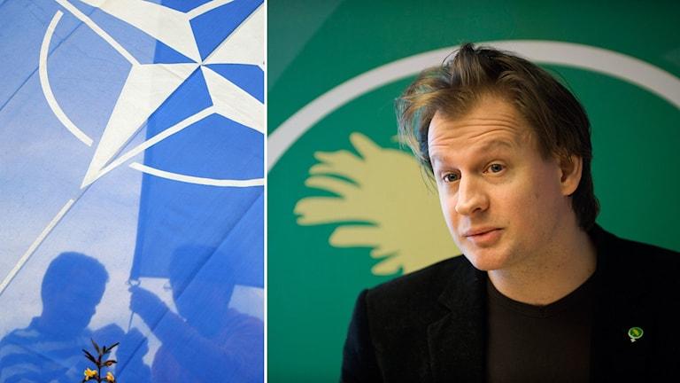 Natosymbol och Carl Schlyter framför MP-logga.