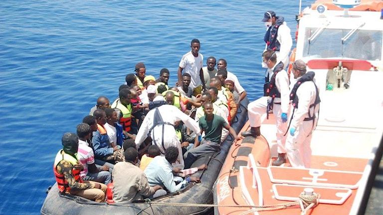 Båtflyktingar på Medelhavet som räddats till Italien. Foto: Guardia Costiera