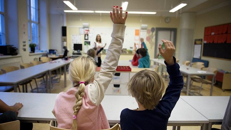 Bilden visar två barn, bakifrån som räcker upp handen i ett klassrum. Foto: Jessica Gow/TT.