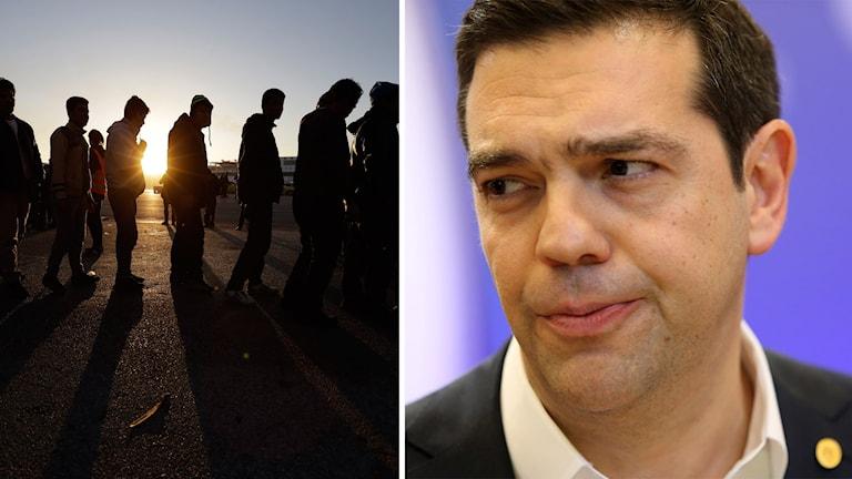 Flyktingar i Grekland och Alexis Tsipras, Greklands premiärminister.