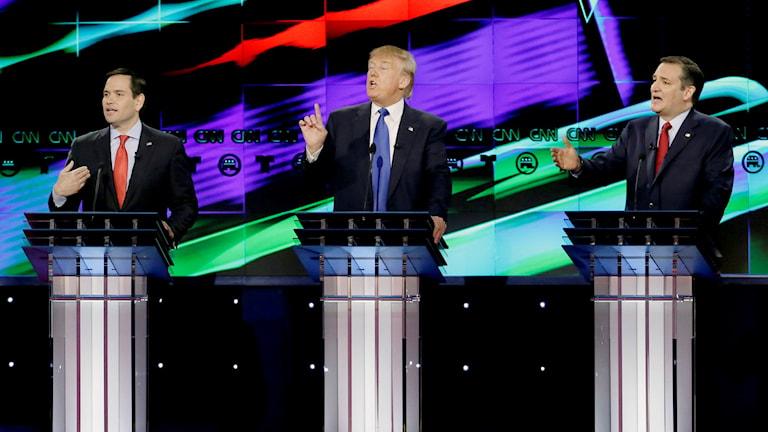 Marco Rubio vänster och Ted Cruz höger debatterar med Donald Trump