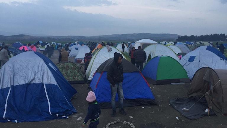 Tält för flyktingar i norra Grekland.