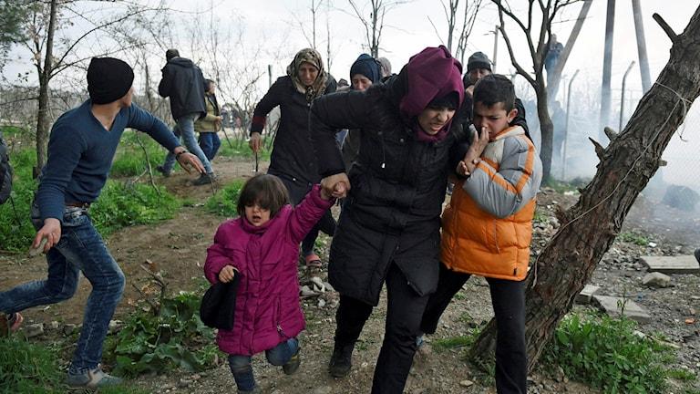 Makedonsk polis sköt tårgas mot flyktingarna som försökte ta sig över gränsen.