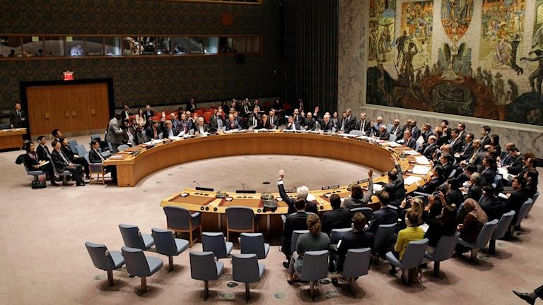 Interiör från FN:s säkerhetsråds mötesrum.