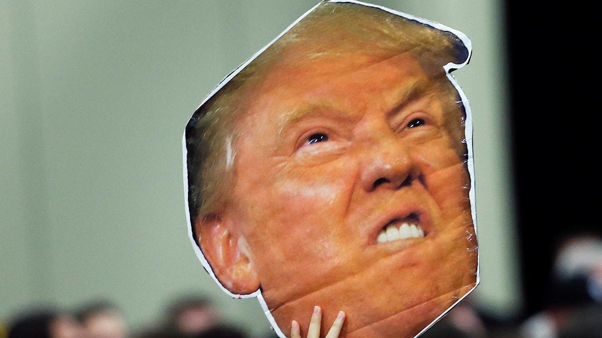 Donald Trump var i ledningen när en procent av rösterna var räknade.