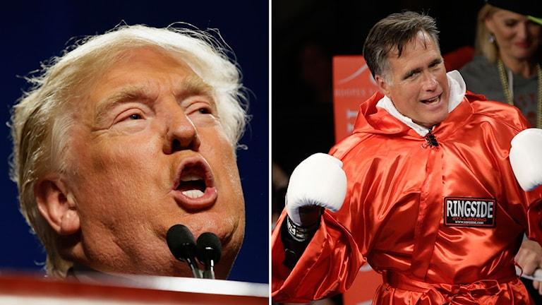 Trump t.v och Romney med boxningshandskar.