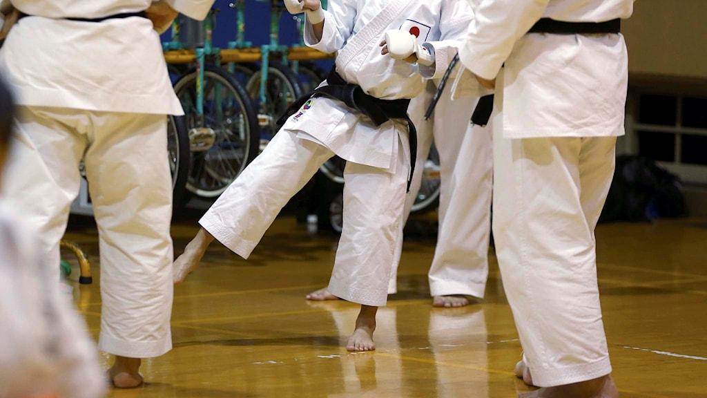 Personer som utövar karate.
