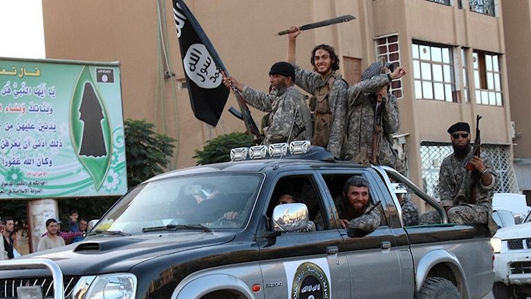 En militant grupp ur Islamiska Staten kör i kortege i Raqa, Syrien.