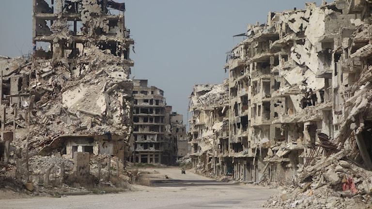 Ruiner Homs