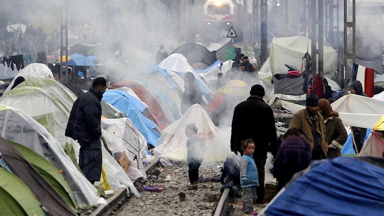 Ett tåg rullar in vid Greklands norra gräns, Idomeni, som omvandlats till ett migrantläger.