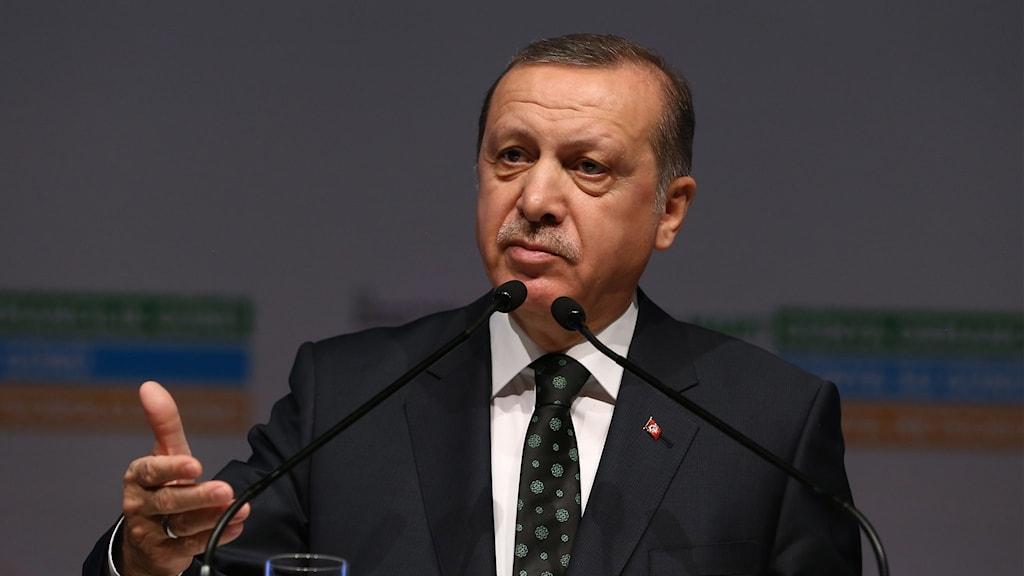 Diktaren Erdogan vill att Tyskland inleder en rättsprocess mot en tysk tv-komiker.