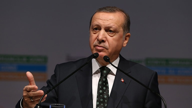 """President Recep Tayyip Erdogan avfärdade i ett tal i Istanbul europeiska länders kritik av Turkiets bristande mänskliga rättigheter och mediefrihet som """"hyckleri""""."""