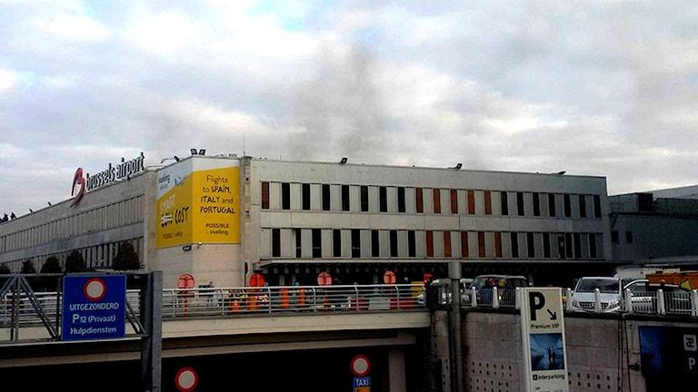 Rök över Bryssels flygplats. Foto: Daniela Schwarzer/TT.