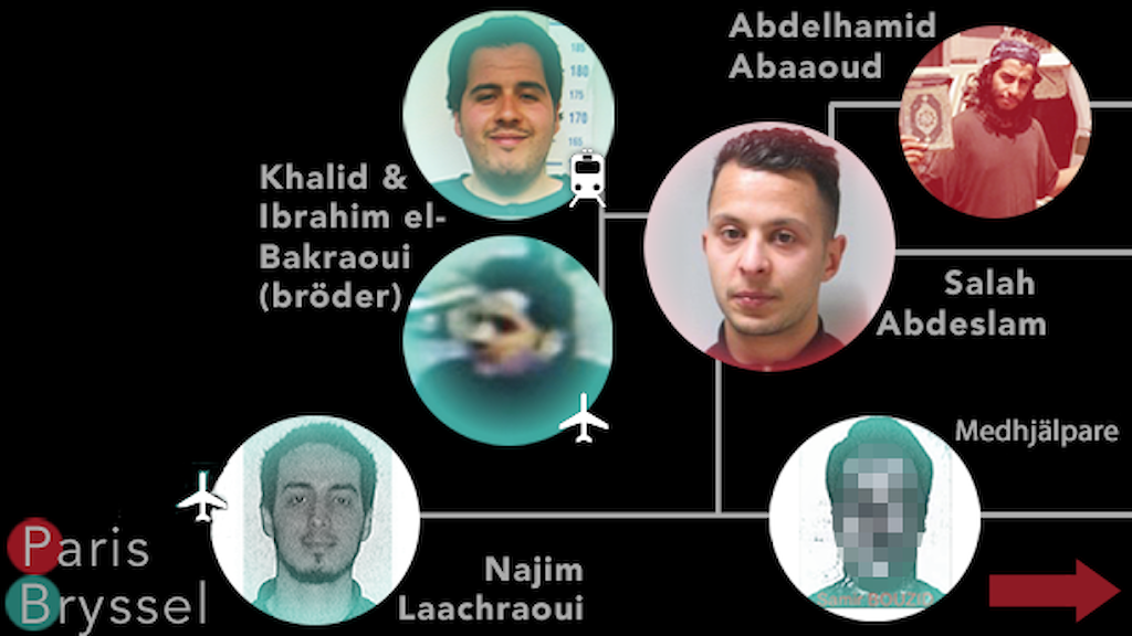 Grafik visar länkar mellan terrorister i Brysselattackerna och Parisattackerna. Grafik: Nils Lindström/Sveriges Radio. Foto: TT.