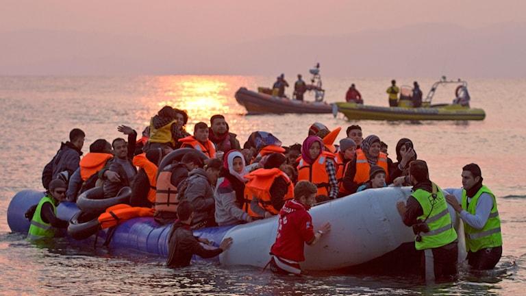 Gummitbåd fulla av flyktingar i oranga flytvästar