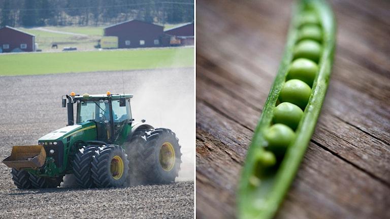 montage traktor och ärtskida