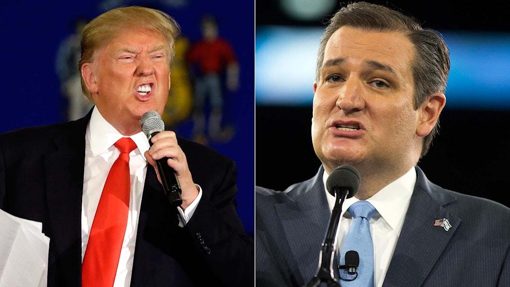 Presidentaspirantkandidaterna Donald Trump och Ted Cruz.