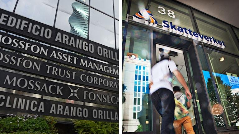 Skatteverket granskar uppgiferna i Panamadokumenten Foto: TT