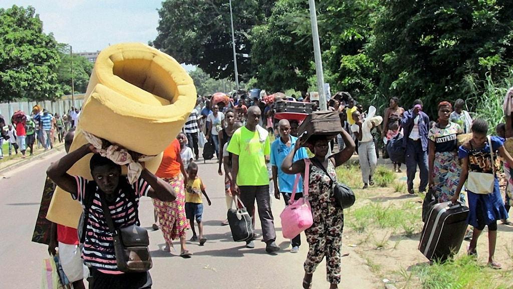 Invånare i södra Kongo-Brazzaville flyr striderna mellan säkerhetsstyrkor och okända beväpnade män.