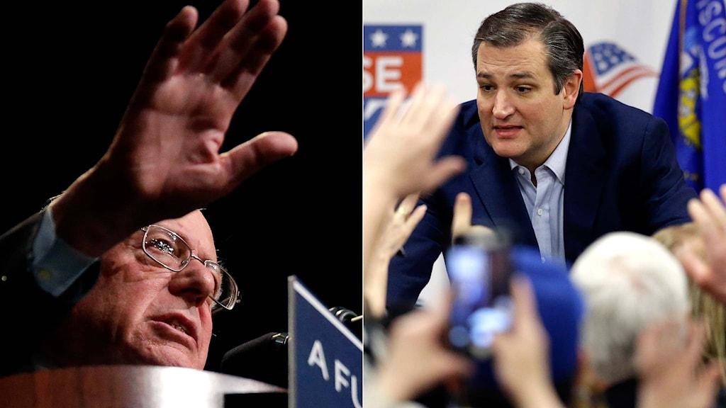 Bernie Sanders och Ted Cruz.