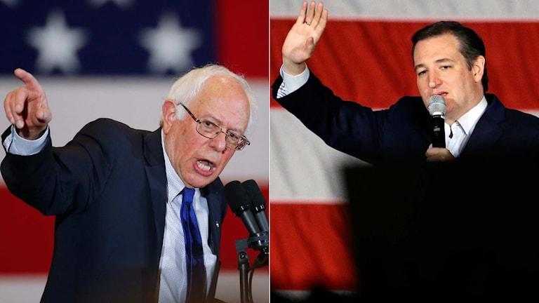 Presidentkandidataspiranterna Bernie Sanders och Ted Cruz.