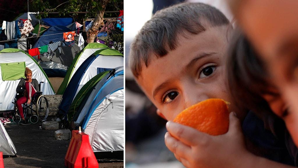 Läger med asylsökande nära Greklands norra gräns.