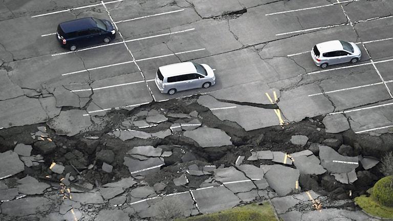 Stora djupa sprickor i asfalten på en parkeringsplats.