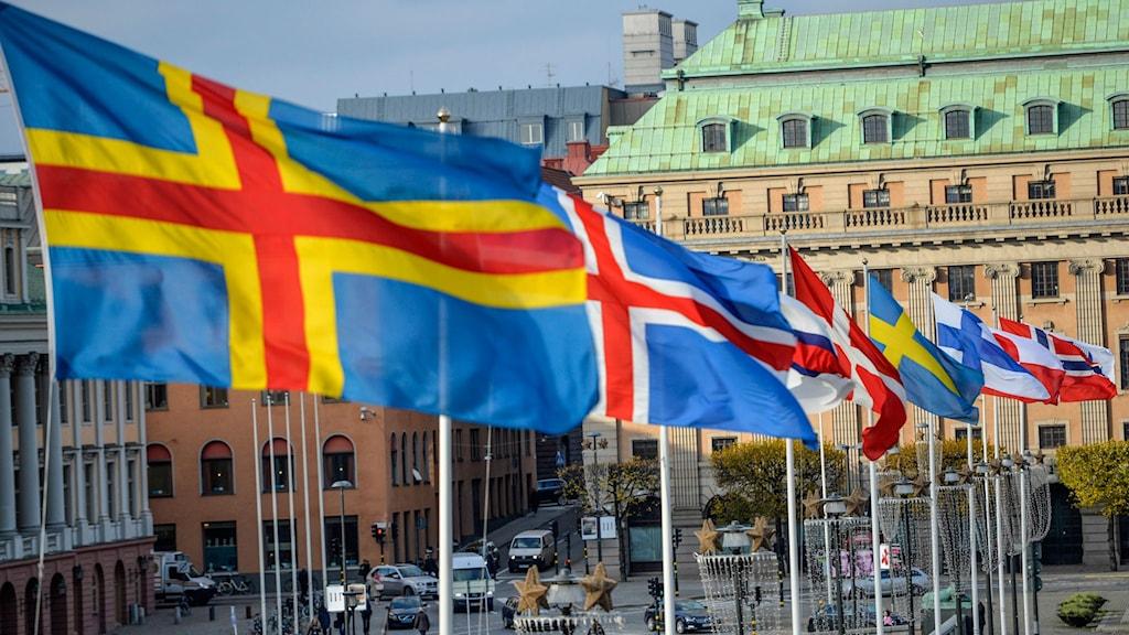 Nordiska Rådet möts i Oslo i dag. Foto: TT