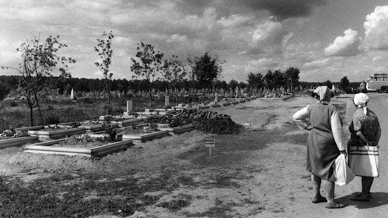 På en kyrkogård i den lilla byn Mition utanför Moskva vilar nu de döda från Tjernobyl sida vid sida.