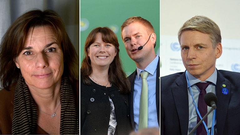 Isabella Lövin, Åsa Romson, Gustav Fridolin och Per Bolund.