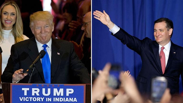 Donald Trump och Ted Cruz.