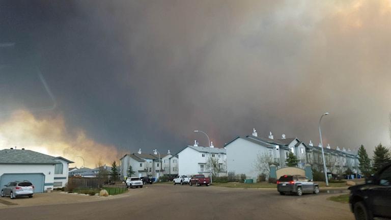 Hela bostadsområden har brunnit ner i den största skogsbranden i provinsen Albertas historia.