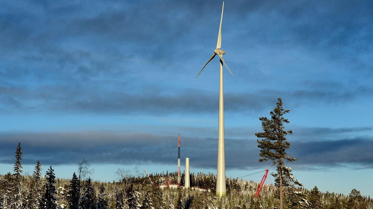 Vindkraftverk byggs utanför Piteå.
