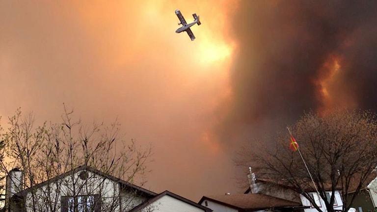 Branden rasar nära bostadshus.