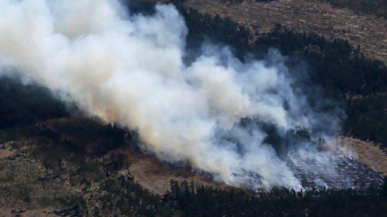 Gräsbranden har utvecklats till en större skogsbrand på Gotland. Flygbild.