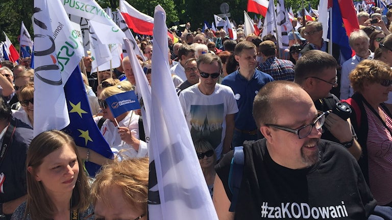 Demonstrationer i Polen