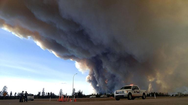 Skogsbranden i Fort McMurray, Kanada
