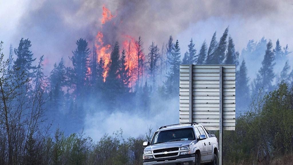 Kanada brand bil framför lågor