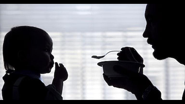 En föräldraledig man matar sin son. Foto: Fredrik Sandberg/Scanpix.