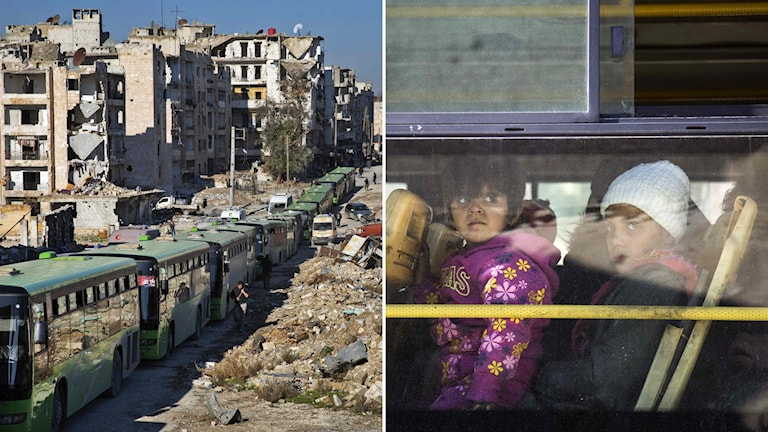 Aleppo.