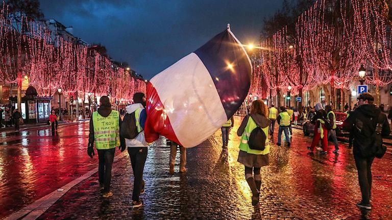 Gula Västarna: Miljöorganisationer Stämmer Franska Staten