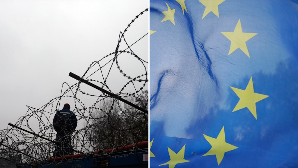 Delad bild: Taggtråd vid en gräns, EU-flagga.